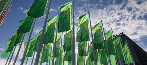 grüne woche