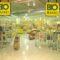 Immer mehr Verbraucher kaufen Bio